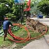 Ternyata Ini Penyebab Jaringan Internet Telkomsel di Papua Kembali Gangguan